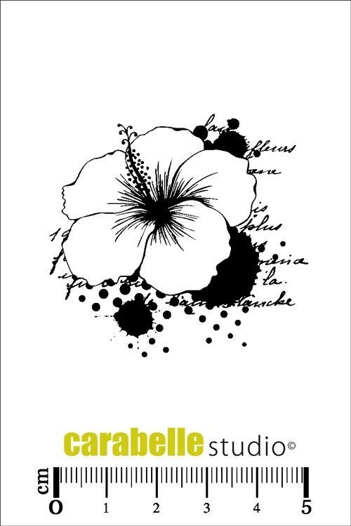 Les 25 meilleures id es de la cat gorie tatouages de fleurs d 39 hibiscus sur pinterest dessin de - Tatouage fleur d hibiscus ...