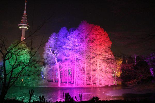 WINTERLICHTER im LUISENPARK MANNHEIM #Winterlichter #Luisenpark #Ausflugsziel