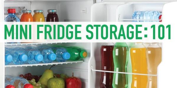 Mini Fridge Storage 101