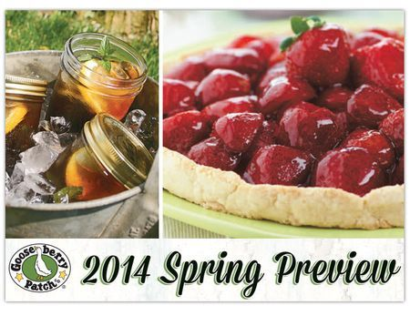 Free Download: Gooseberry Patch 2014 Spring Preview