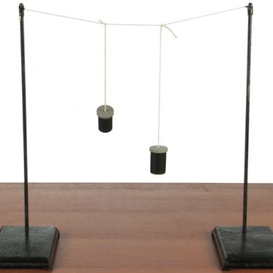 Magic with Physics - Pendulum Stop | Experiments | Steve Spangler Science  Use for Peer Pressure