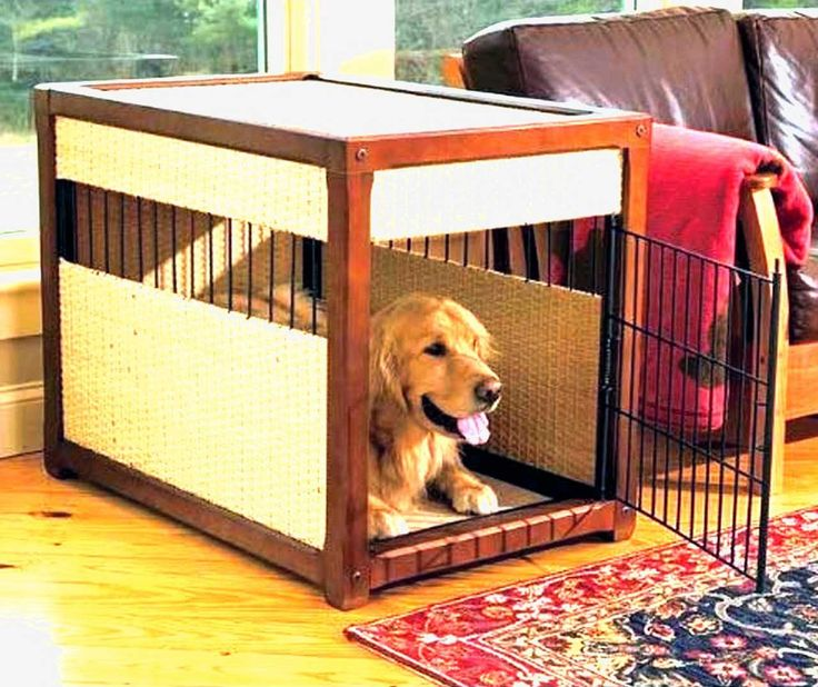 Small-Dog-Furniture-Ideas ~ http://www.lookmyhomes.com/smart-in-choosing-dog-furniture/