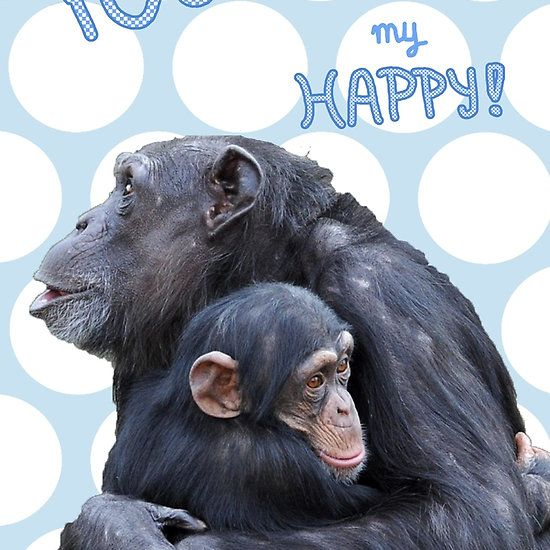 You are my HAPPY! (green-blue) cool for boys room, nursery, with this cute monkey