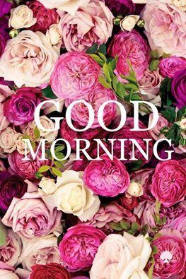 Buenos días! #goodmorning #buenosdias #felizdia #nuestrodiab