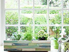Indoor Window Box Ideas