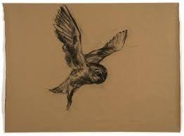 nicola hicks drawings - Google Search