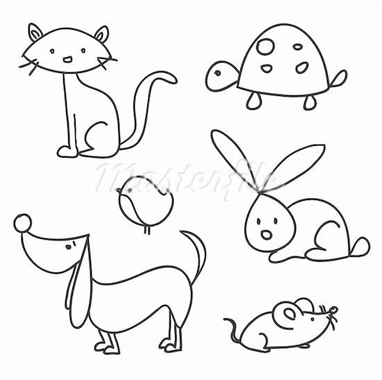 Animals to draw from graphic sample