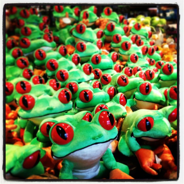 Complete your adventure by visiting our Retail Village and taking home a souvenir. We've got lots of Rainforest tree frogs just like our mascot Cha Cha! The Rainforest Cafe London. http://www.therainforestcafe.co.uk/aretail.asp