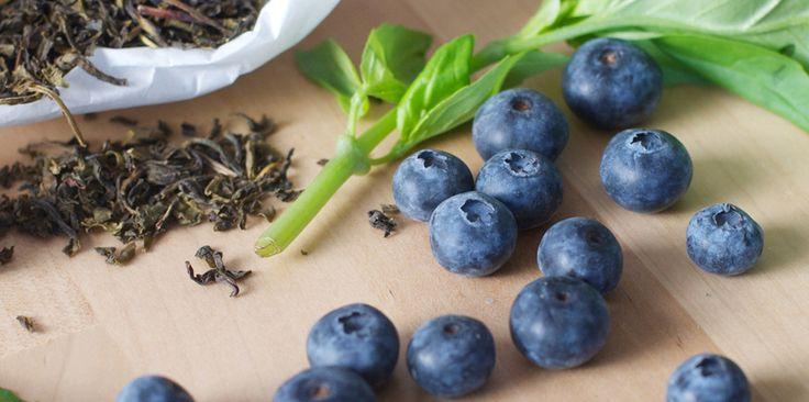 Myrtille, basilic et thé vert les ingrédients de base pour notre kombucha artisanal