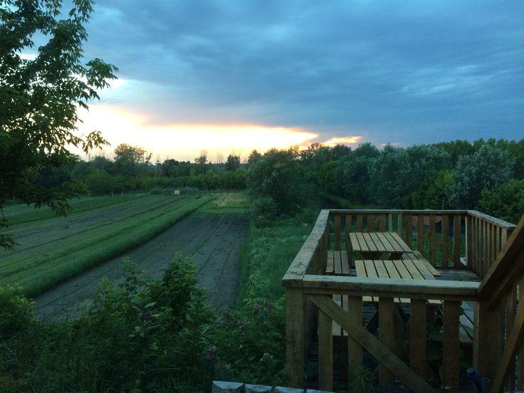 Kilátó naplementében