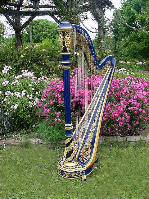 """earth-songs:  My Venus harp """"Excalibur"""" at an outdoor wedding by guitar1940 on Flickr."""
