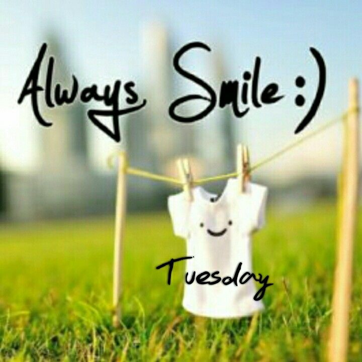 The Daily Smile Mission: Best 25+ Happy Tuesday Quotes Ideas On Pinterest