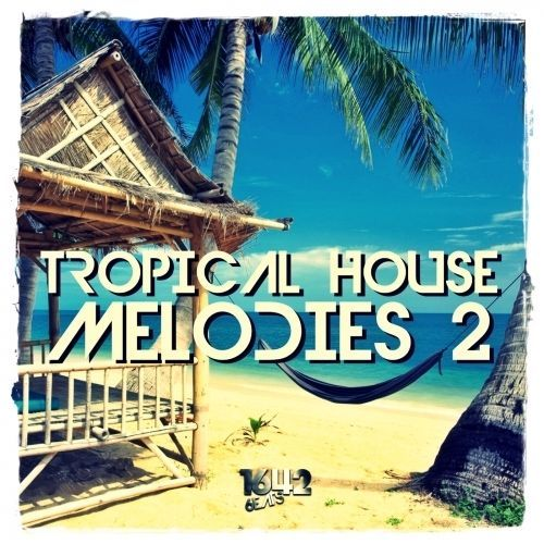 Tropical House Melodies 2 (24-Bit WAV LOOPS / SAMPLES)