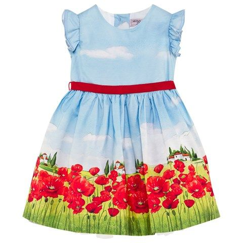Multi Poppy Field Print Dress