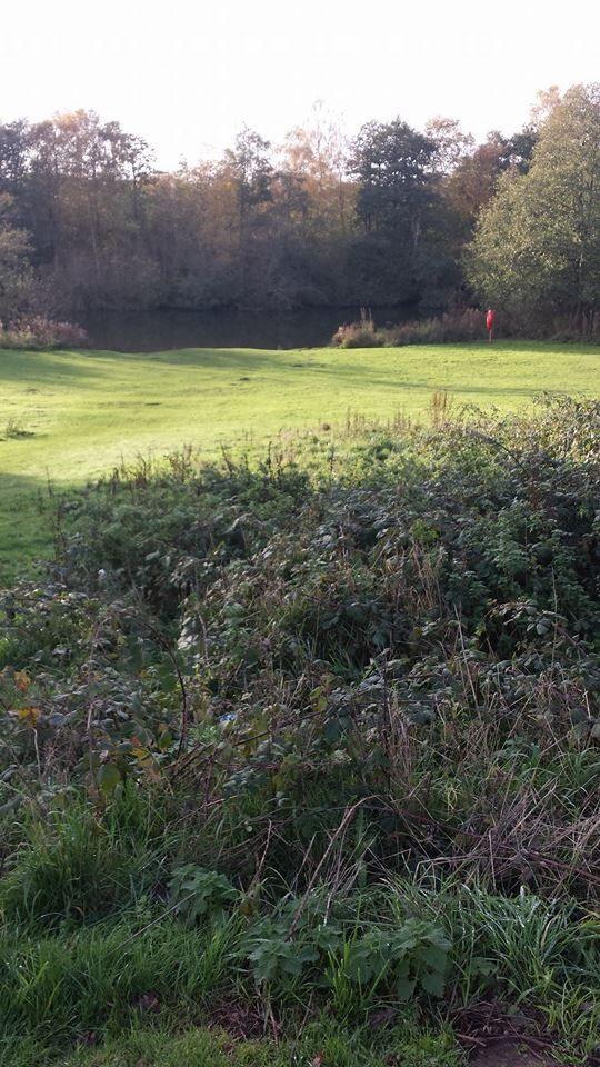 Caen meadow Wroxham Norfolk