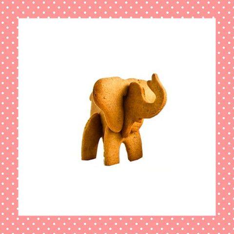 Het is toch fantastisch als je koekje 'levensecht' de lucht in gaat? Deze olifant zet je na het bakken van de losse koekjes zo in elkaar! http://dekinderkookshop.nl/product/3d-koekvorm-olifant/