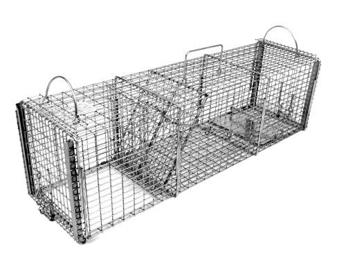 Tomahawk Professional Series Multi-Purpose Trap for Skunks and Prairie Dogs   http://huntinggearsuperstore.com/product/tomahawk-professional-series-multi-purpose-trap-for-skunks-and-prairie-dogs/?attribute_pa_size=30l-x-8w-x-8h