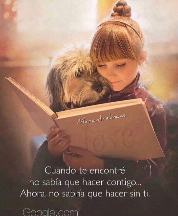 El Momento Que Mas Amo Perros Tristes Perros Frases Y