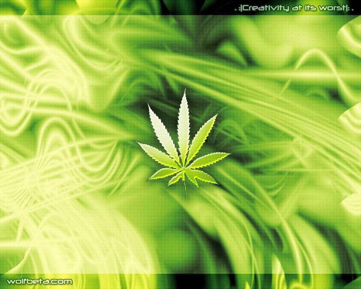 Składanka #2 - Polskie reggae o marihuanie