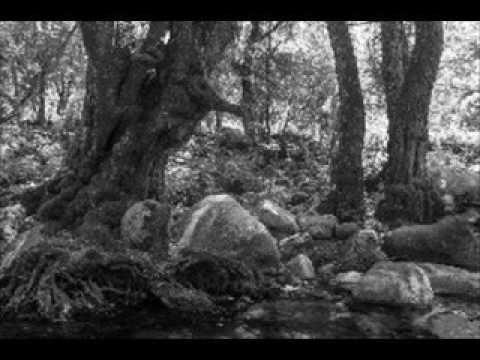 Maigret a lovec zvuku ( rozhlasová hra - mluvené slovo ) - YouTube