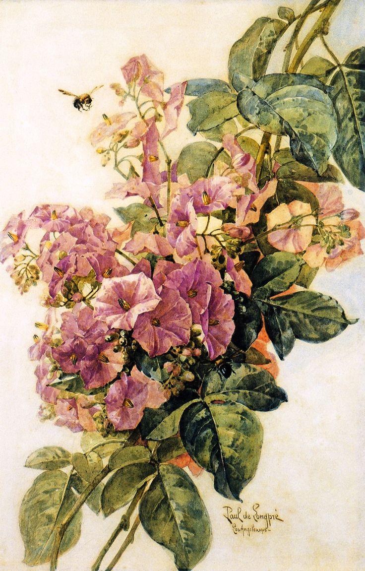 Morning Glories - Raoul de Longpre
