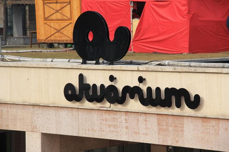 Akvarium ... former Gödör Club in Budapest is a great club and concert location.
