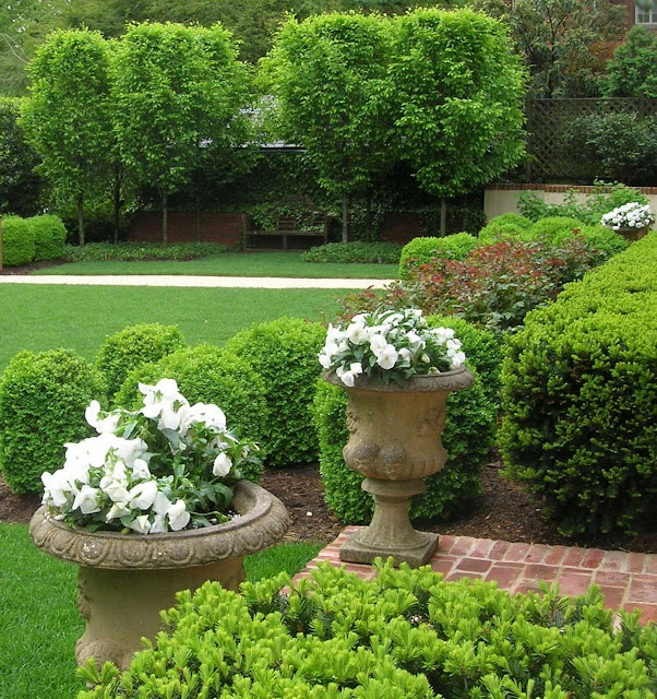 91 best LANDSCAPE images on Pinterest | Landscaping, Garden layouts ...