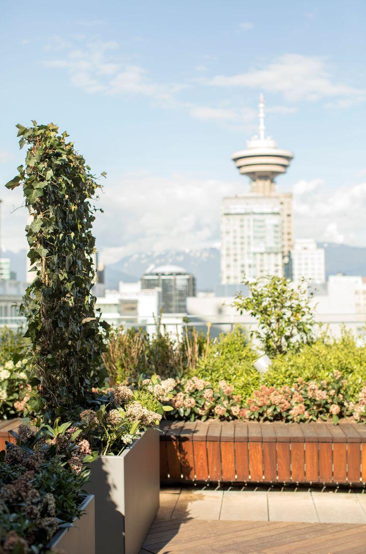 333 best Modern Outdoor Living Ideas images on Pinterest
