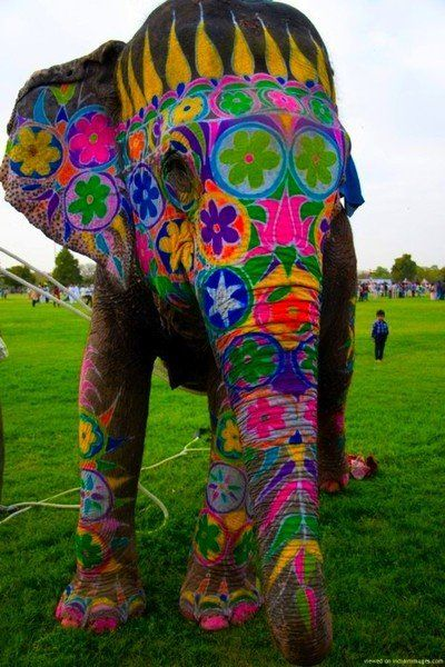 colorful elephant - wow, lot of work went into that & a lot of elephant patience