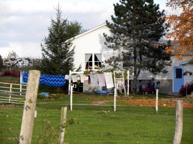 El Tour de la Vida Simple de los Amish | El Tiempo Latino | Noticias de Washington DC