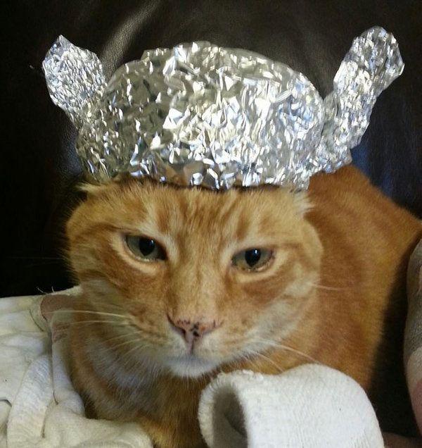 how to make a tin foil alien hat
