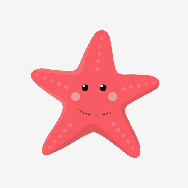 Gambar Starfish Merah Kartun Kartun Comel Clipart Starfish Cantik Kartun Comel Png Dan Vektor Untuk Muat Turun Percuma Kartun Png Merah