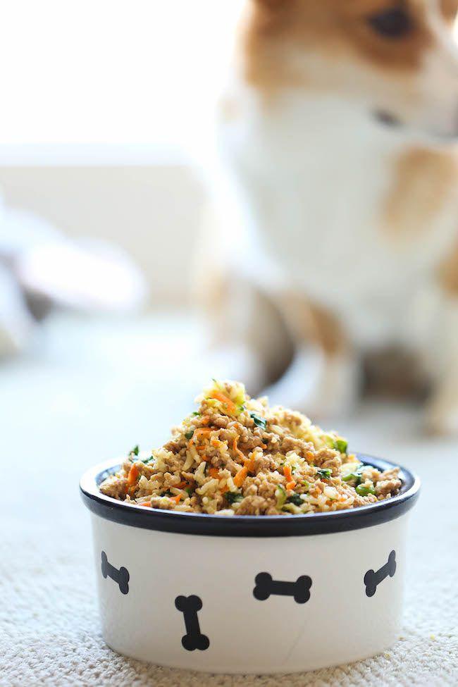 Nourriture pour chien faite maison                                                                                                                                                                                 Plus
