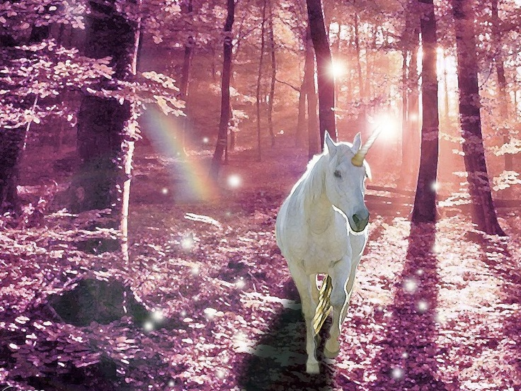 Scenery unicorns beautiful and