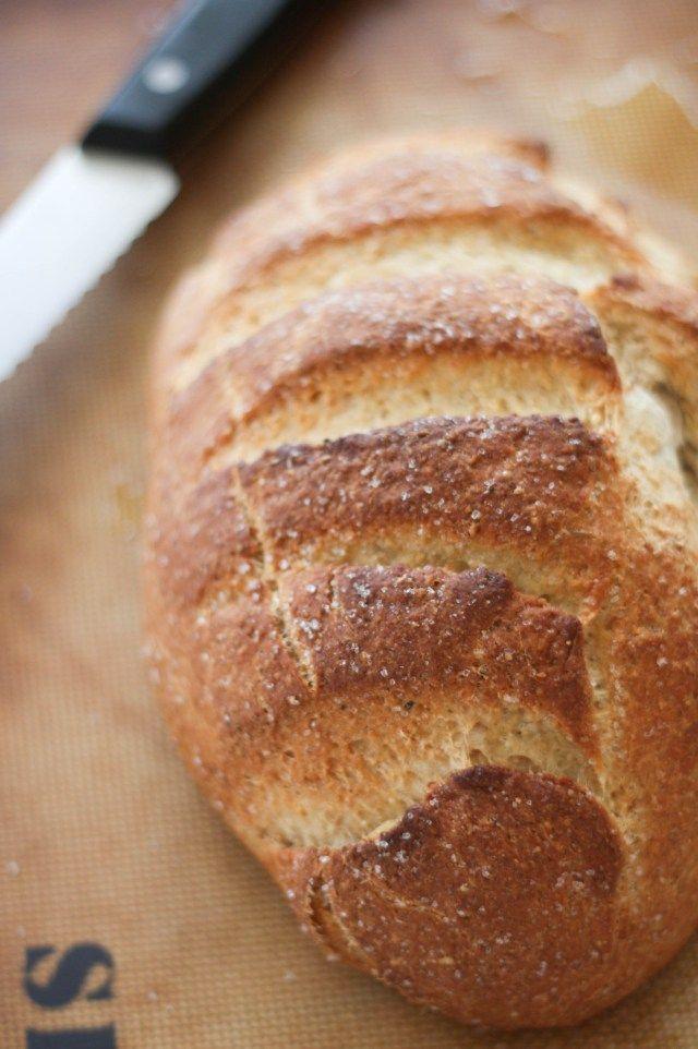 simple whole wheat bread machine recipe