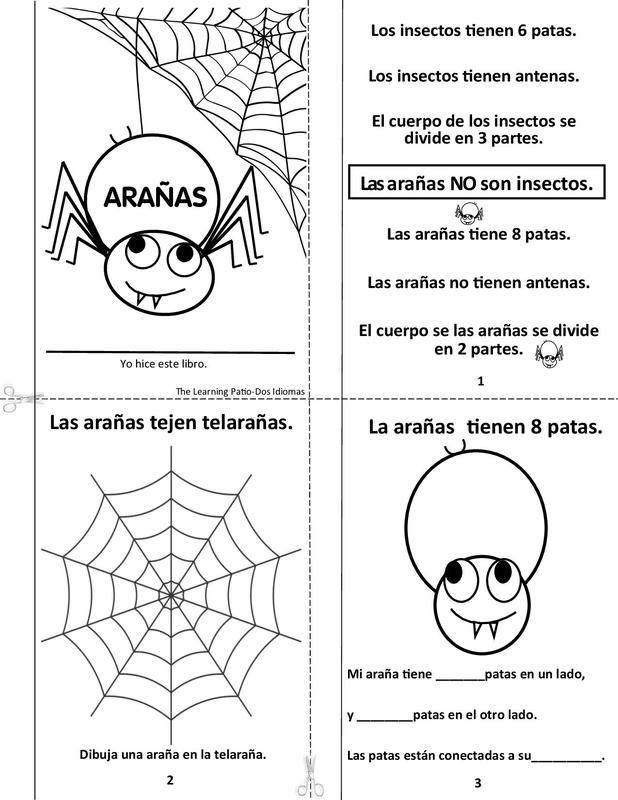 Spiders mini book 7 pages. English /Spanish Become a