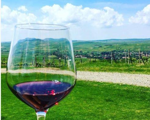 5 lucruri ce trebuie să le ştii despre vinurile de la Lechinţa