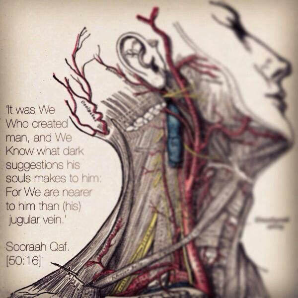 Allah is closer to us than our jugular vein. That should be enough for us to at least try to stay on the straight path & to avoid Haraam.