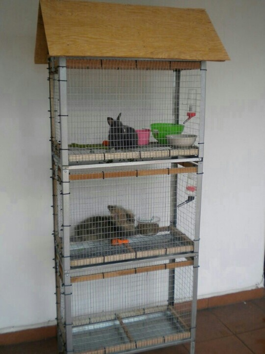 24 best images about diy rabbit enclosure on pinterest for Awesome rabbit hutches