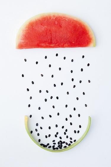 Via Rebecca Newport | Watermelon Still Life