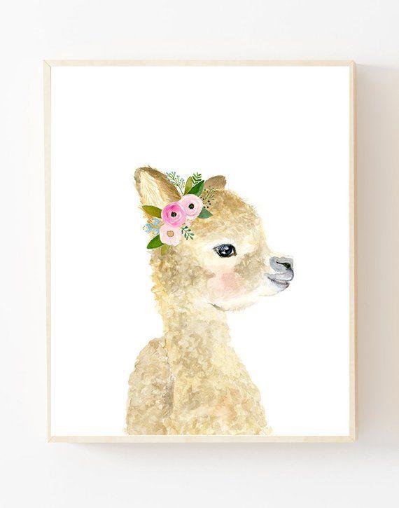Floral Babyalpaka Lama Lama Kindergarten Tier Bilder Alpaka