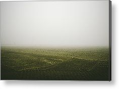 Foggy Autumn Morning Metal Print by Cesare Bargiggia