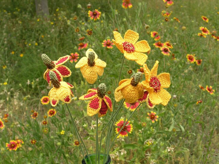 Ode to the Mexican Hat Wildflower    http://carriewolf.net/2011/04/03/ode-to-the-mexican-hat-wildflower/