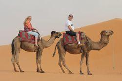 HOME - World Of Wildlife (WOW) Travel - TPI | Shauna Treichel/Dean Treichel | Your Travel Specialist