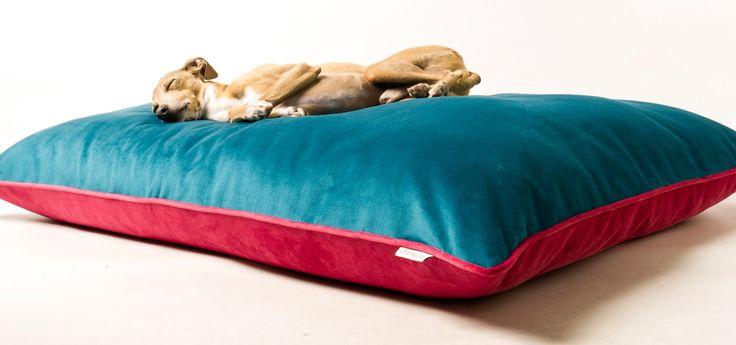 Charley Chau luxury dog bed mattress in velour