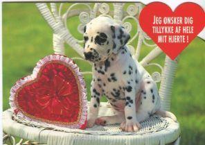 Trojaborgs Forlag Postcard, Jeg onsker dig tillyke af hele mit hjerte (Congratulations from the botom of my heart)