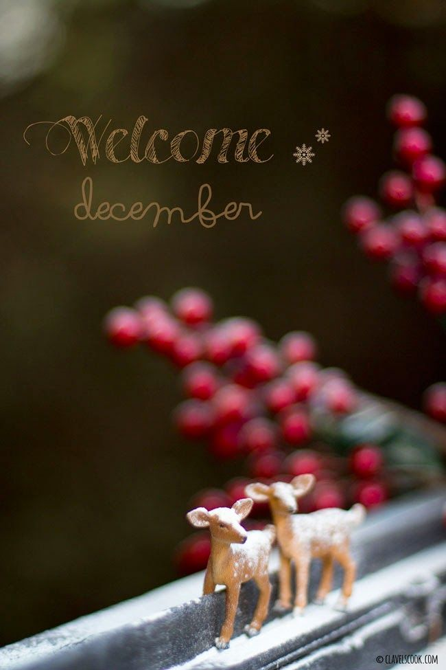 Bem-vindo Dezembro! Welcome December