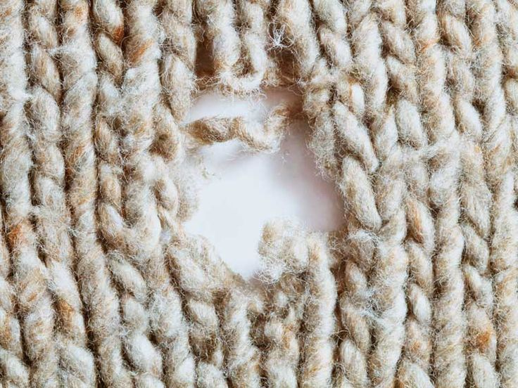 Clothes moth larvae can leave holes in natural fibres such as wool, cashmere and silk. Find out what you can do to get rid of this tiny pest.