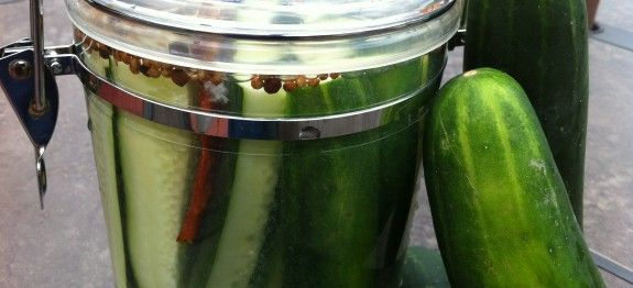 No-Salt Dill Refrigerator Pickles ... can't wait to use my fresh homegrown cucumbers for these!!