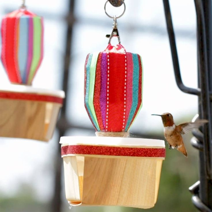 Turn Your Backyard Into A Hummingbird Hangout With These